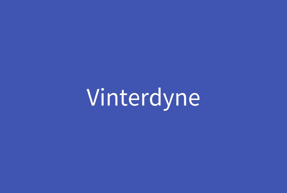 vinterdyne forside